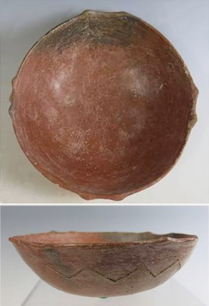shallow small  bowl